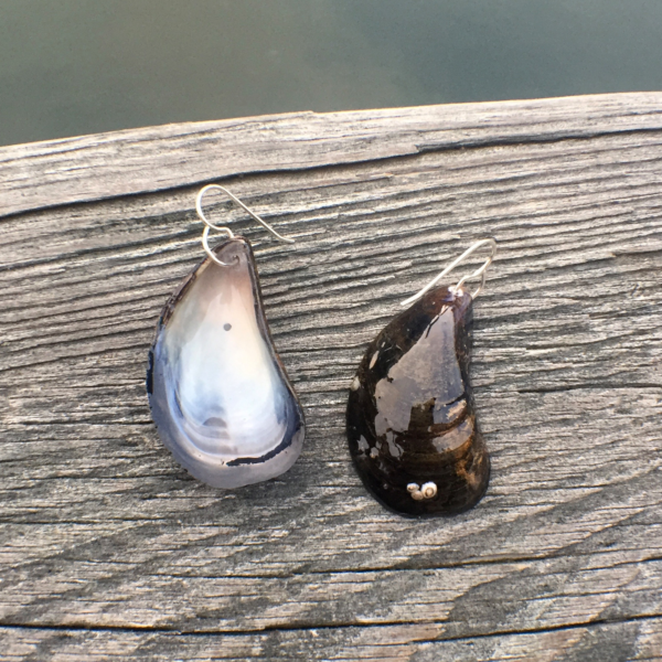 Mussel Shell Earrings with real barnacles