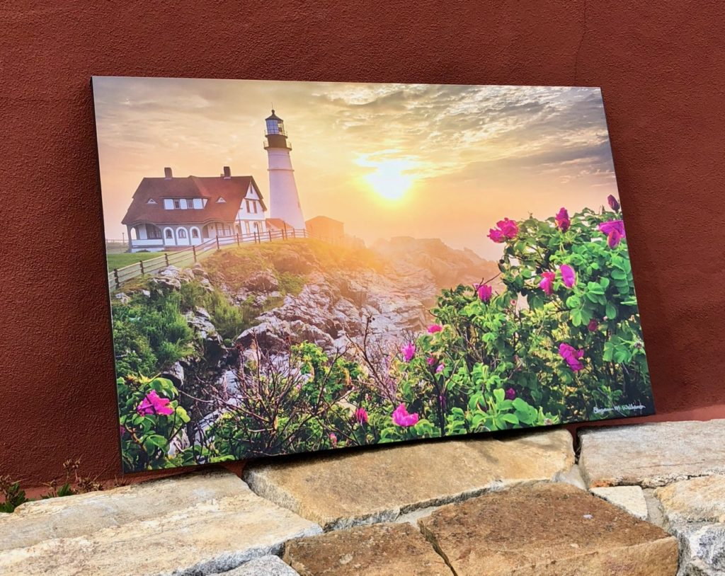 Morning Rose   Canvas by Benjamin Williamson Photography