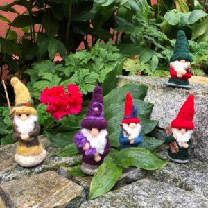 Home Gnomes