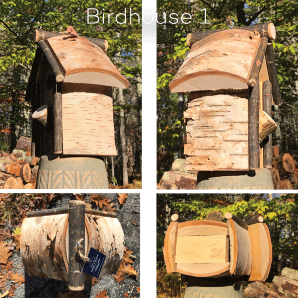 Birch Tree Birdhouse 1