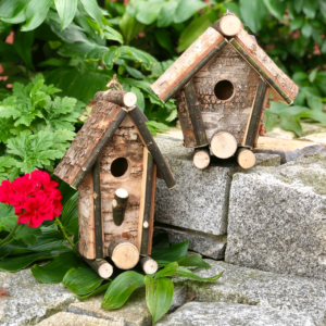 Birch Tree Birdhouse